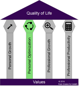 The Four Pillars of Success: Personal Optimization